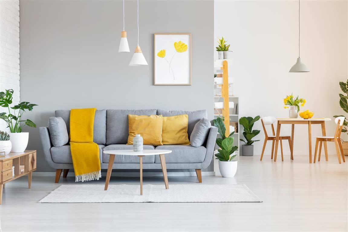 שטיחים מודרניים לסלון