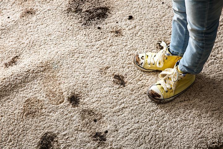 לא רק אצלכם השטיח מתלכלך!